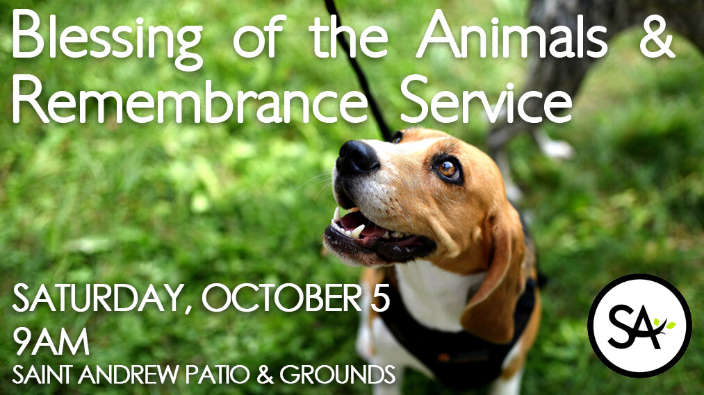 Animal Blessing & Remembrance Service